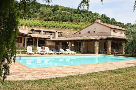 """Agriturismo I Cigni - Appartamento """"Piccionaia"""" - Montefiore dell'Aso - Lejlighed"""
