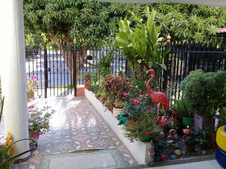 La casa de la flores #2