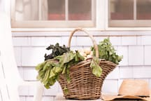 Private Cottage on Organic Farm