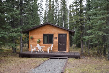 Fox 'n Fireweed: Birch Cabin