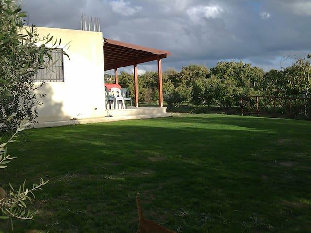 The guite cottage near the town. - Paphos - Hus