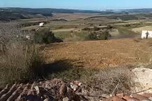 Vista pelos Campos de Cultivo - Vue à travers les champs de culture