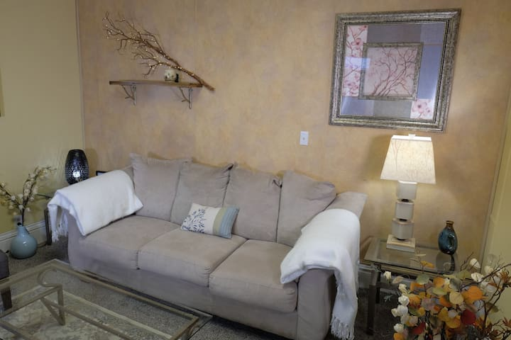 Comfy, Cozy & 1 Mile from Mayo Clinic! :) Apt #2