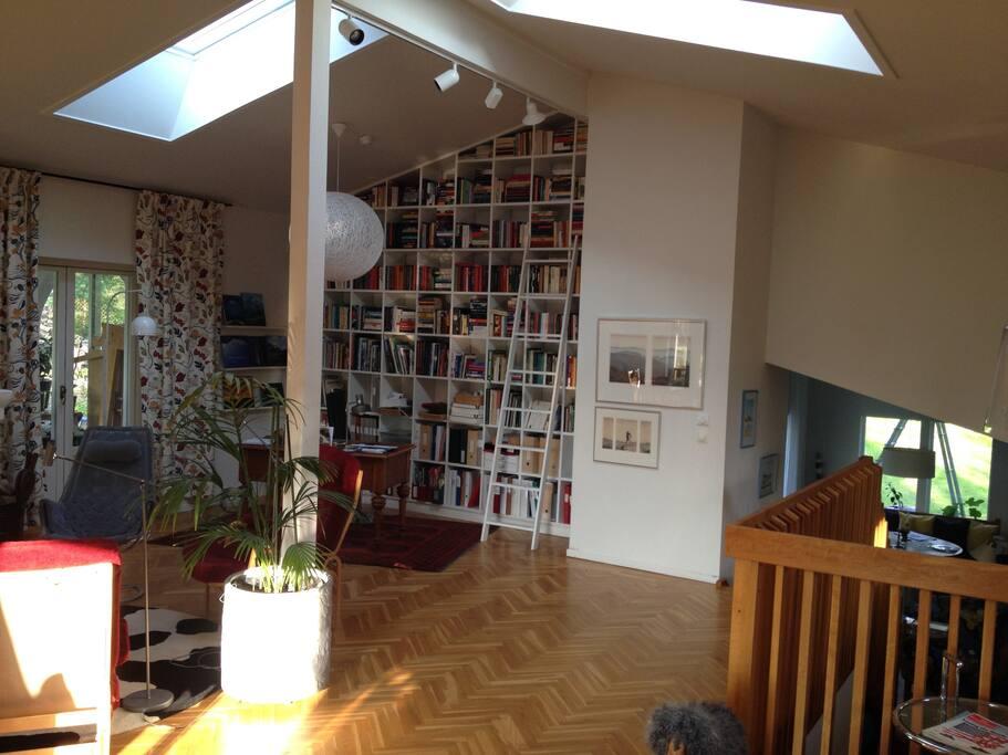 Livingroom - skylights