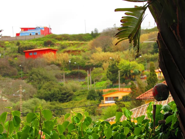 Cozy house in the way to Teide - La Esperanza - Apartemen