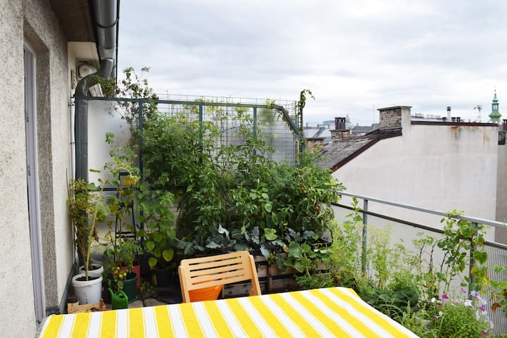 Sweet studio with green terrace at Vienna center - Viena - Apartamento