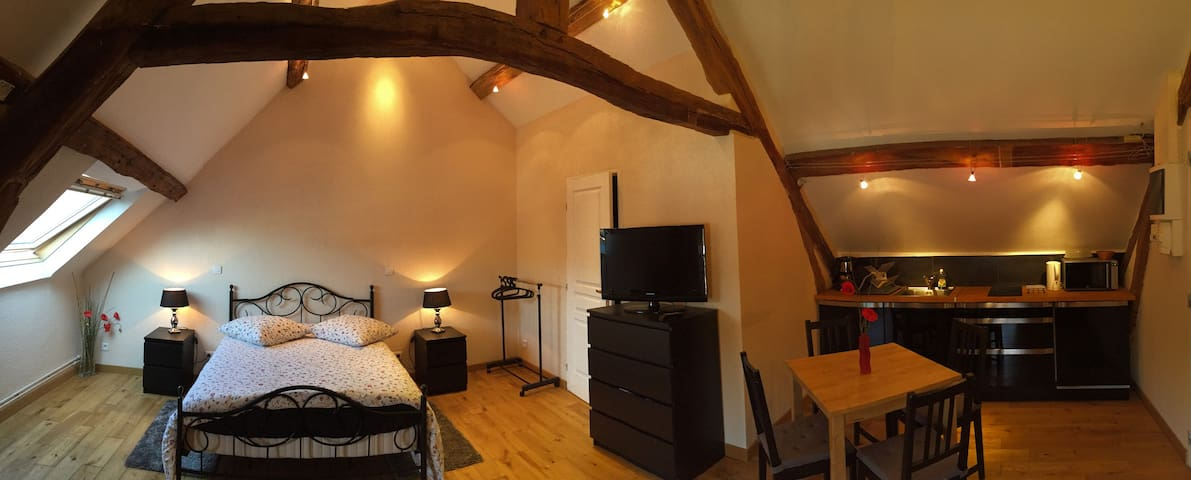 "charming & spacious Flat real Farm - ""COQUELICOT"" - Bailly - Lägenhet"