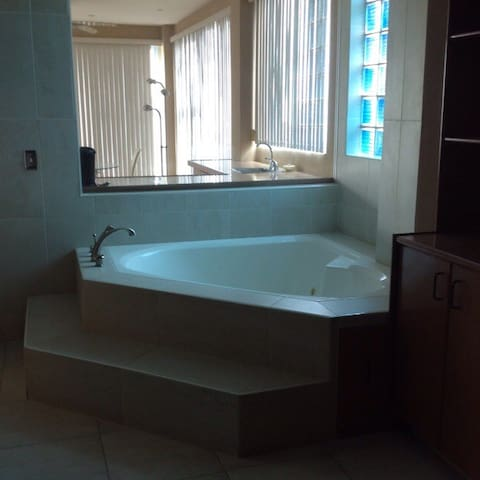 Master bathroom spa tub