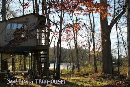 TREEHOUSE! Help an Organic Veggie Farm! Be Happy! - Candler