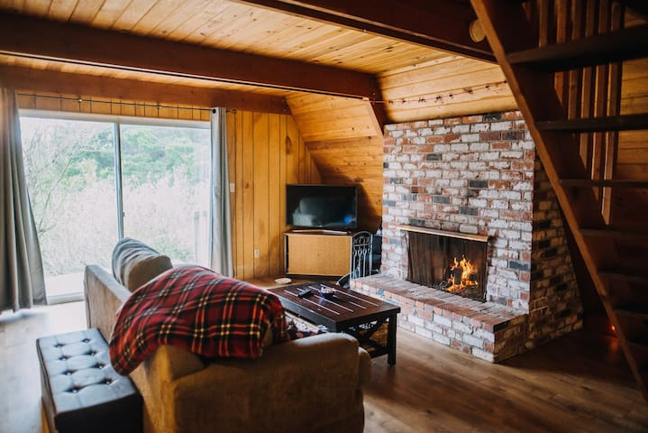 Living room with a cozy fire
