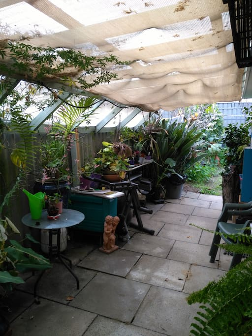 The back patio is very lush.