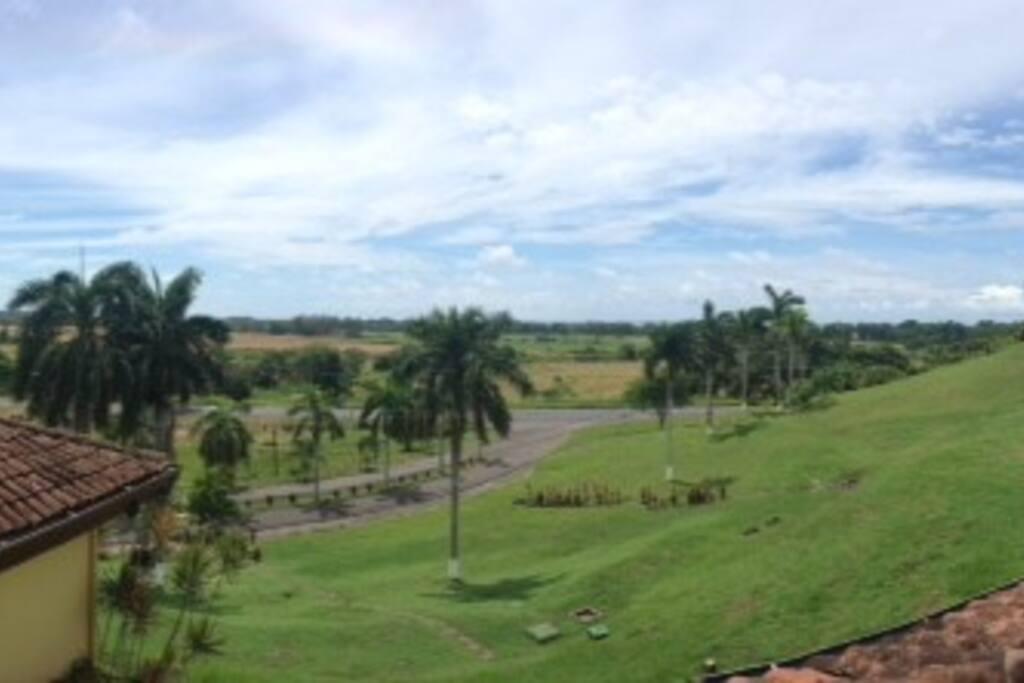 Terrace Ocean View