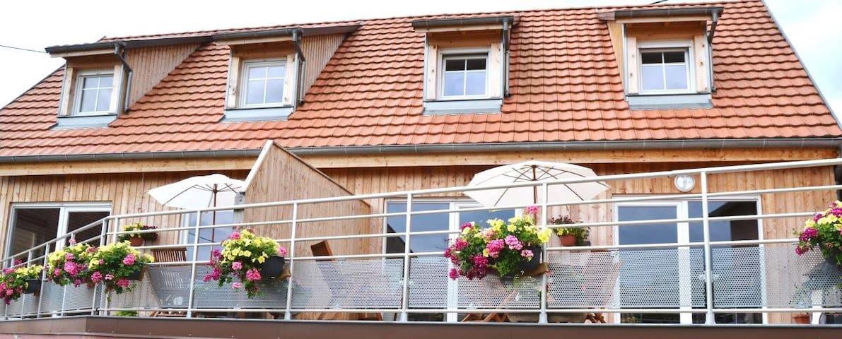 Loue Gîte NEUF ossature bois tout confort - Nothalten - Apartment