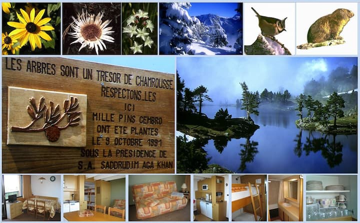 Vacance d'été ou d'hiver à Chamrousse Le Recoin