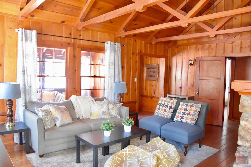 Living room with a sleeper sofa