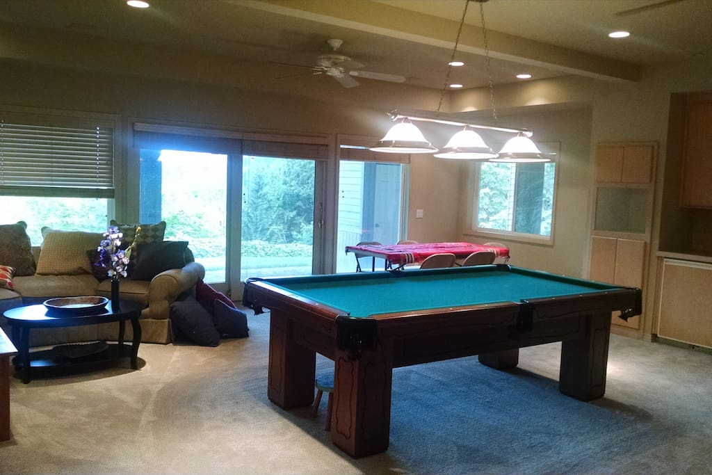 Common area with TV and sofa, mini-kitchen, table, pool table.