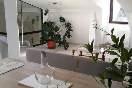 Apartment Johanna Dream, charming and spacious - București