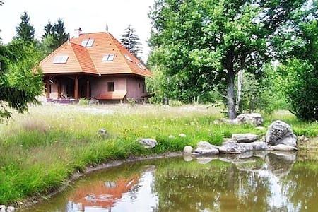 Beautiful & Unique 'Off grid' Forest Lodge - Vlăhița - Luontohotelli