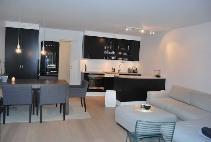 Bright and modern apartment OSL