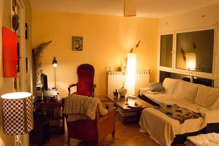 Merveilleux canapé-lit! - Soissons - Huoneisto