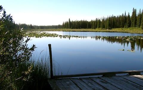 Cozy Cabin in Nimpo Lake on Dean River
