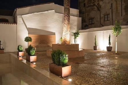 Palacio Cáceres Deluxe | Gran Lujo - Plaza Mayor