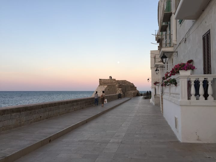 Casa Colibri - Town house in Monopoli, Puglia