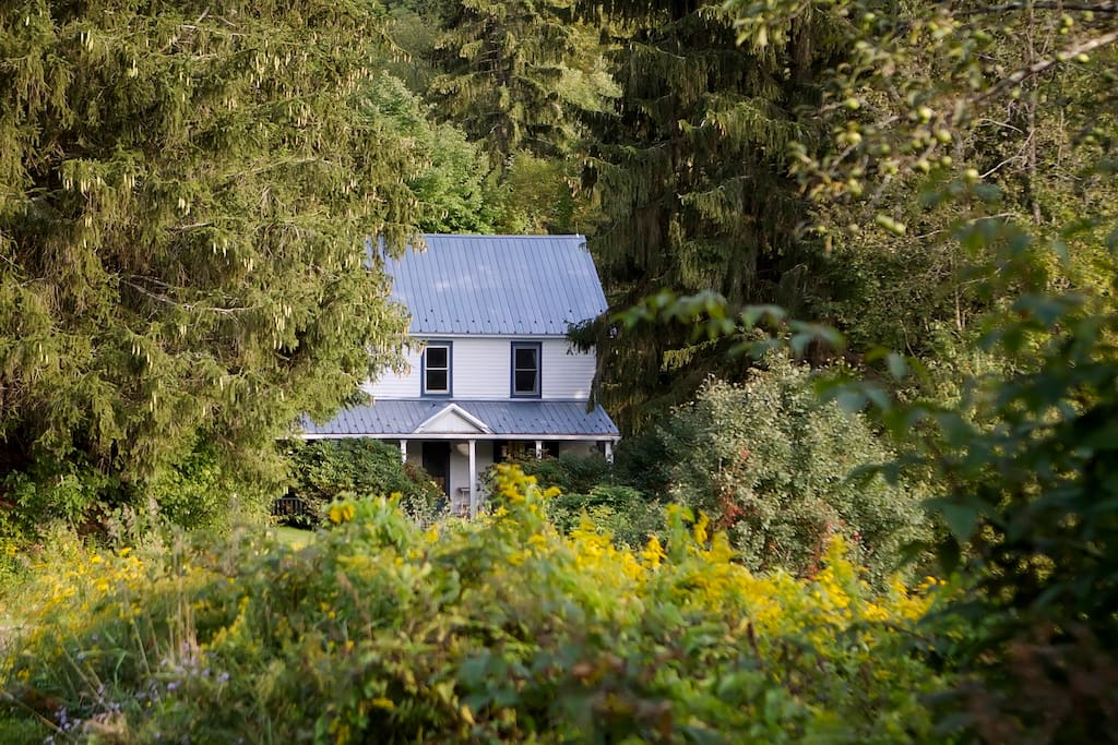 Tucked into the pines at the bottom of a gently winding driveway, the porch welcomes you to your vacation home.