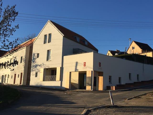 Apartmán 10, U Venuše, Pavlov - Pavlov - Byt