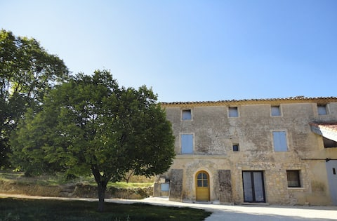 Nice flat in an old farm-olive trees & vineyard