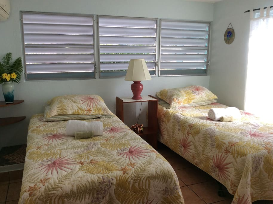 The airy second bedroom has twin beds, dresser and AC.
