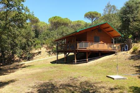 Rustic Cabin in the Woods/Cabaña en el bosque