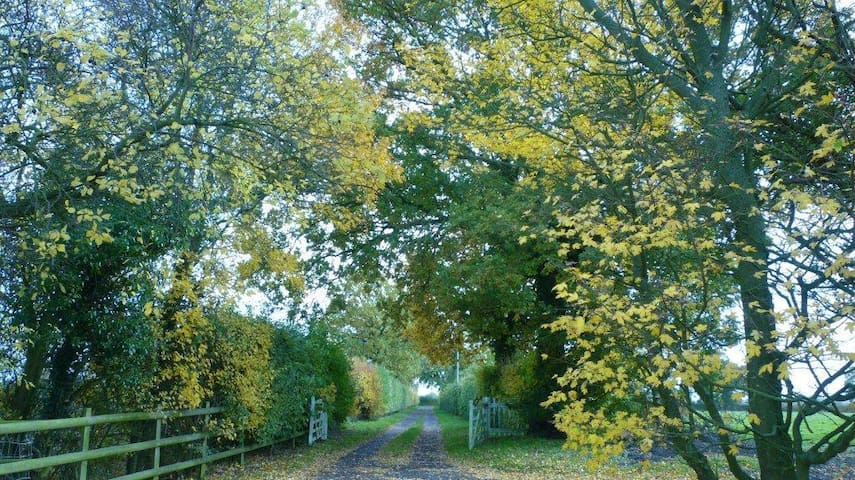 Driveway to the Cartlodge