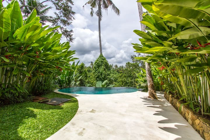 Stunning Infinity pool that overlooks Ubud's beautiful jungle down to the river