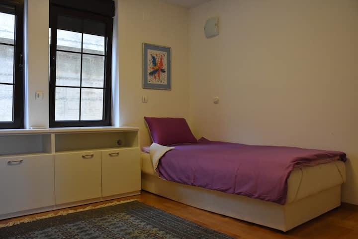 Apartman so dve spalni sobi so prekrasna gradina