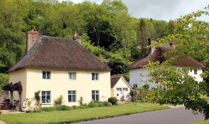 Village retreat in middle of historic Milton Abbas
