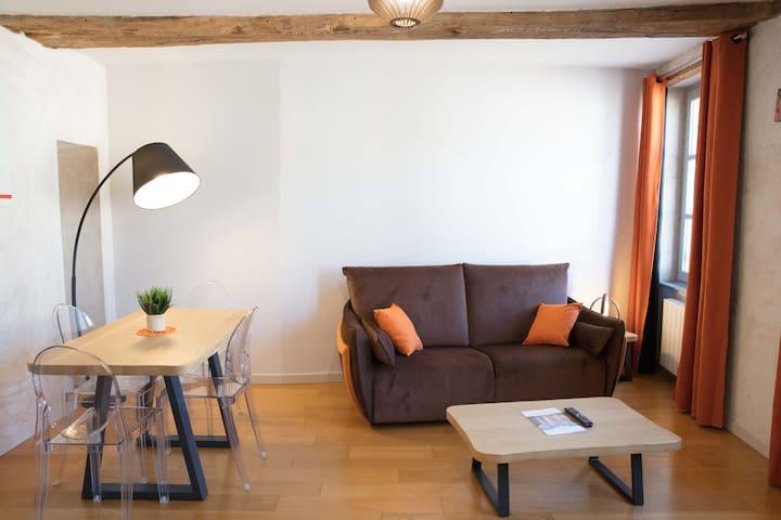 Coin salon avec un canapé-lit (2 personnes). A votre disposition : TV et lecteur DVD. Vue sur la place Carnot.