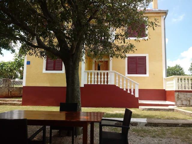 House for rest Dolovi 1