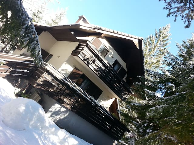 Nice House  near Lake and Forest - Kranjska Gora - Huis