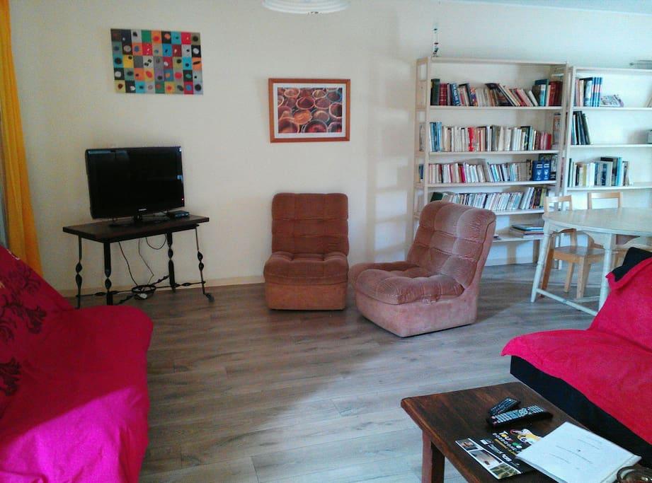 grand salon- salle à manger 35 m2 avec 2 canapés dont 1 convertible, 1 bibliothèque, 1 table + chaises...