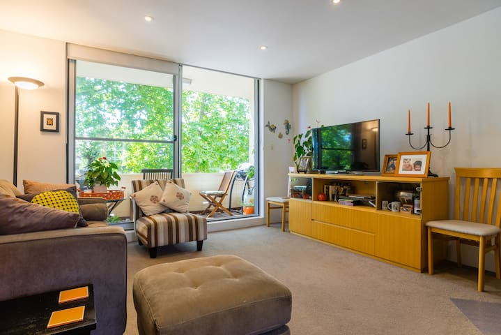Spacious comfortable 2 bedroom. Handy location. - Randwick - Apartment