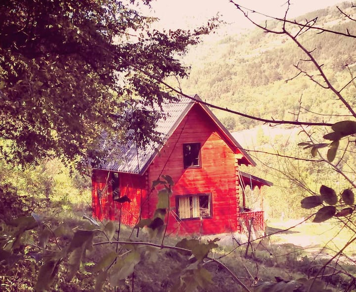 După Gard: your Transylvanian Off Grid-Eco Retreat