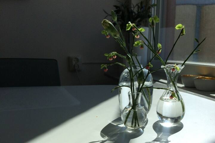 Modern 4 bed apartment in Uppsala city
