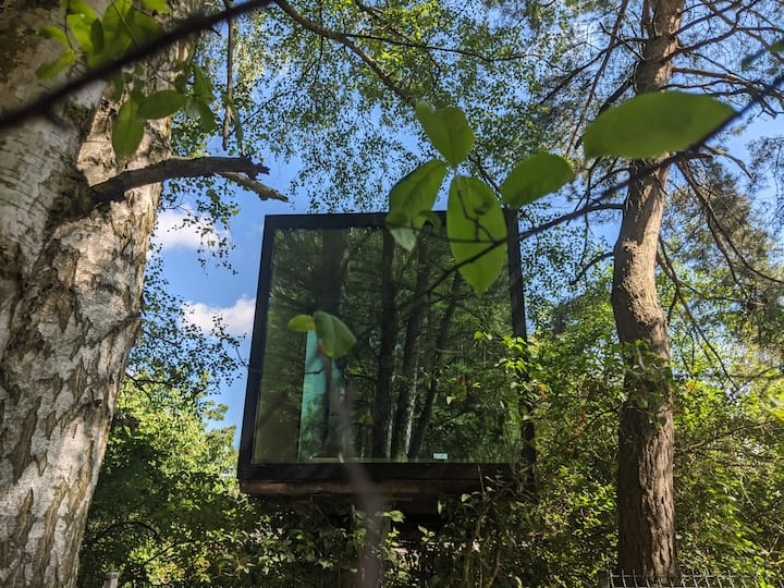 Lost Garden _ dom w drzewach na skraju rezerwatu