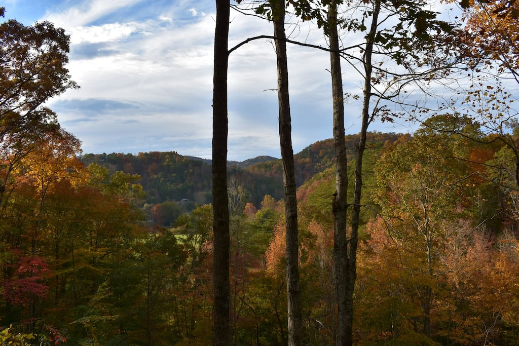 Fall Colors from the deck!