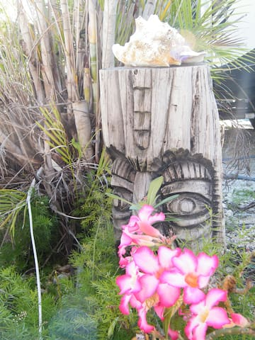 WELCOME to the Tiki Dock