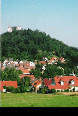Historic Waldenser state