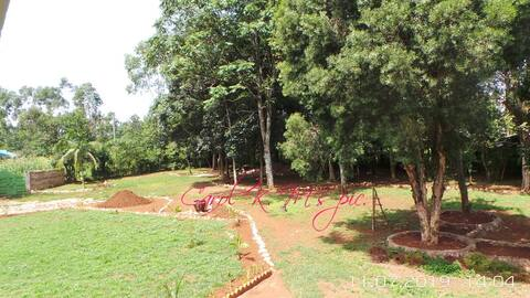 The perfect retreat - close to Kakamega forest.