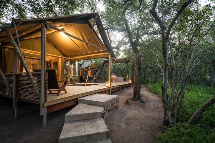 Bundox Safari Lodge - Superior Tent