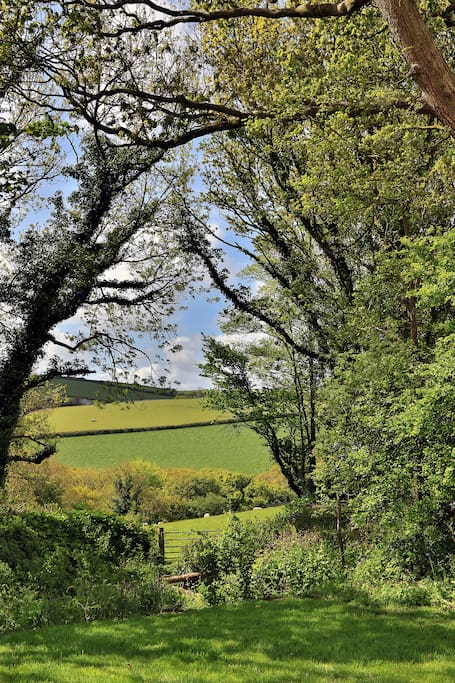 The view from the deck over rolling Cornish countryside
